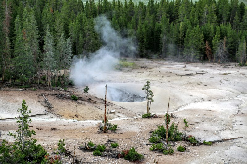 Landschap Yellowstone NP
