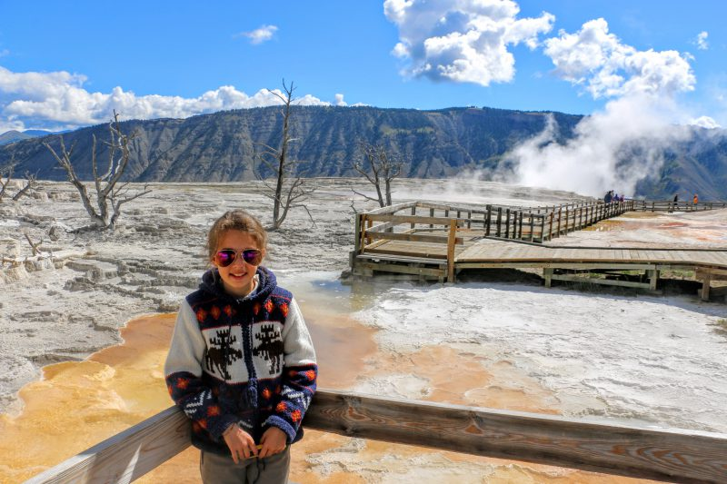 mammoth-hot-springs