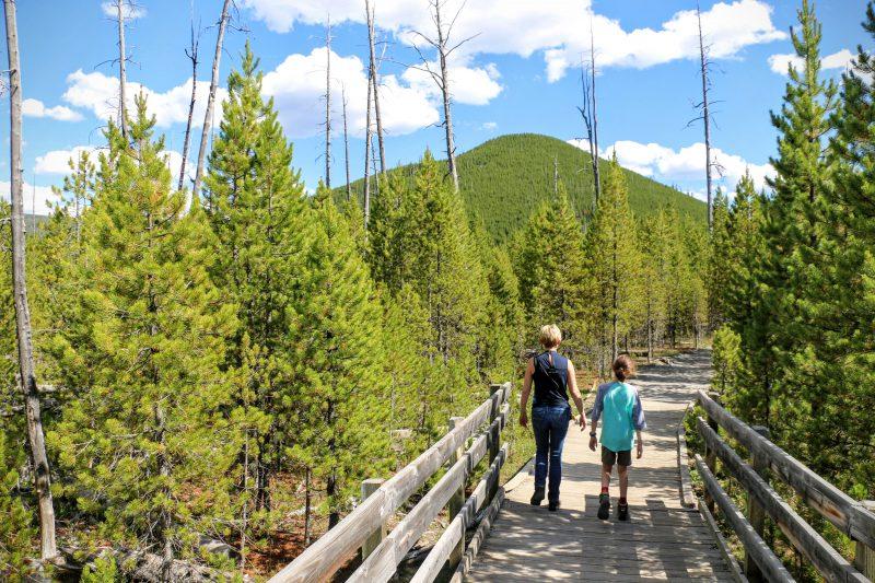 Wandelen in het mooie Yellowstone