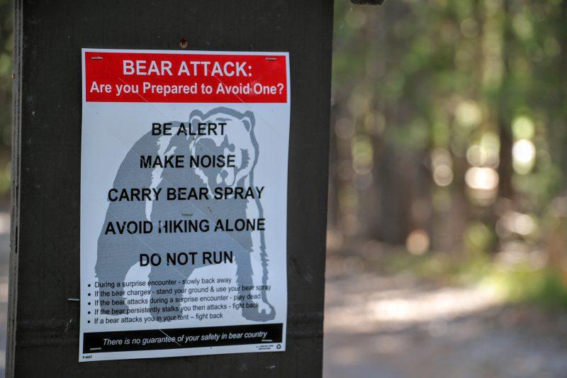 Aanval door beer