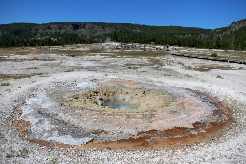 Jewel Geyser Yellowstone