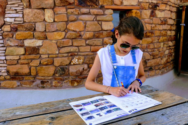 Junior Ranger Grand Canyon