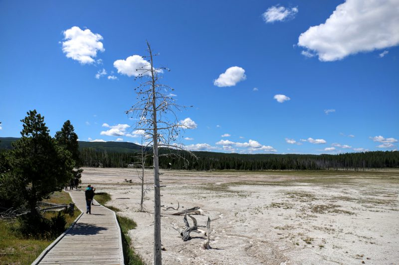 Fountain Paint Pot Trail Yellowstone