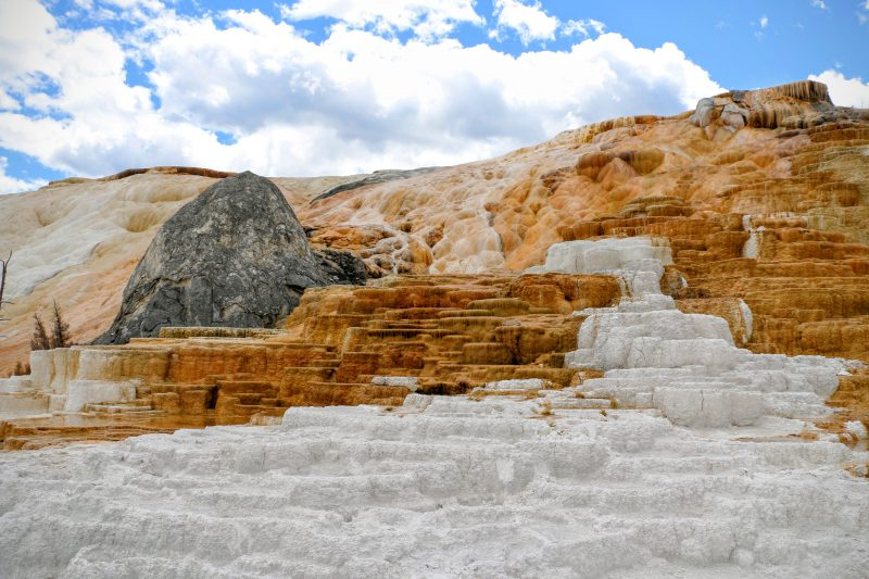 Lower Terraces Mammoth Hot Springs Yellowstone National Park