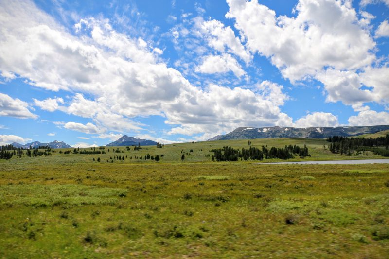 Reisverslag Yellowstone National Park