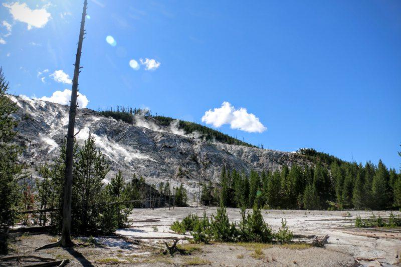 Roaring Mountain Yellowstone Park