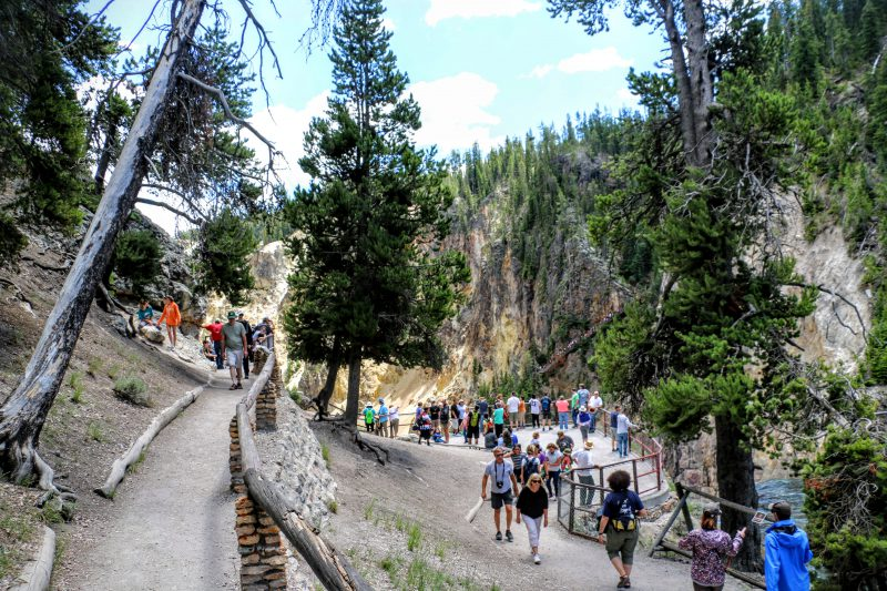 Wandeling naar Upper Falls of the Yellowstone