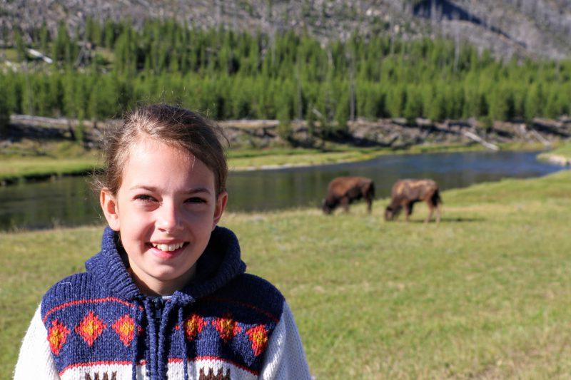 Dieren in Yellowstone