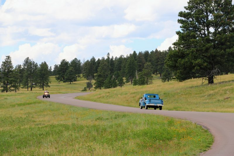 Wildlife loop Custer State Park