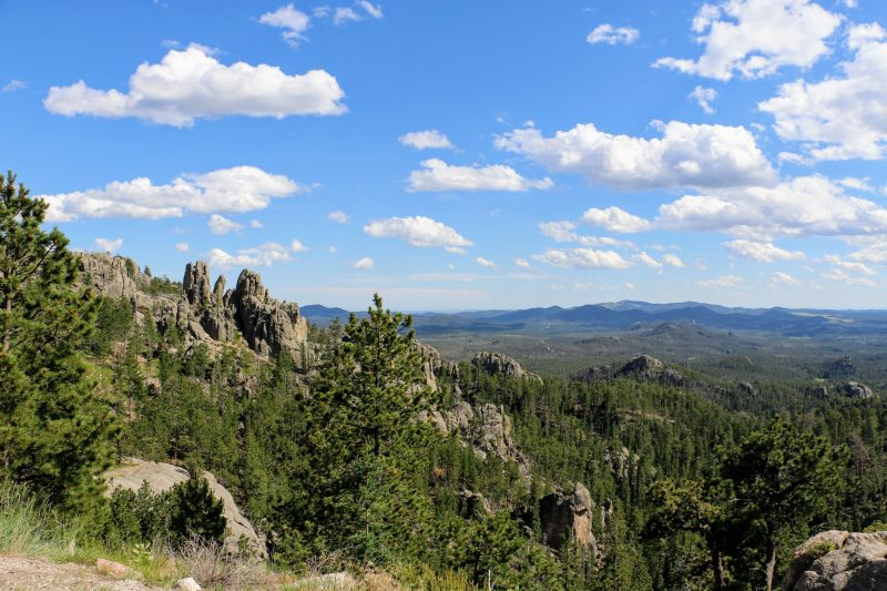 Needles Highway ervaringen