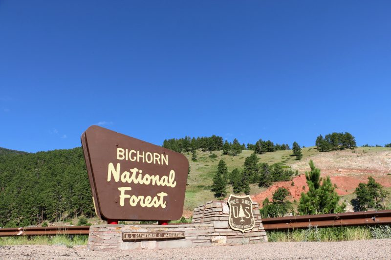 Bighorn National Forest bord